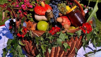 Permalien vers:Nutrition et amincissement